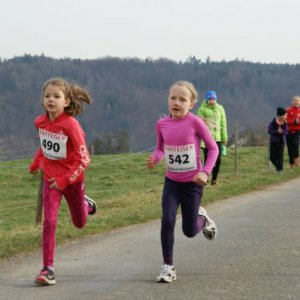 Waldlauf-Boesingen_12.03.17.17_-005